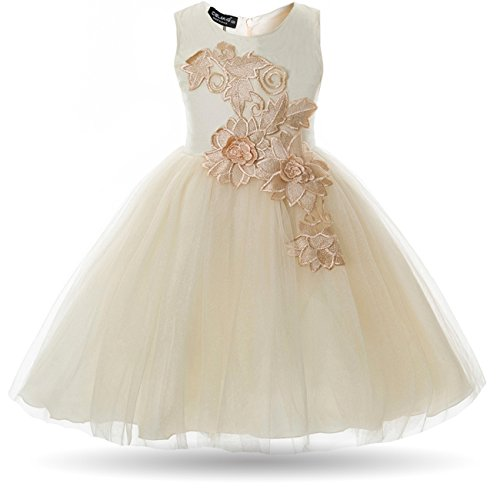 fba702791361 CIELARKO Girl Dress Kids Flower Appliques Tulle Wedding Party Birthday  Dresses for 2-10 Years
